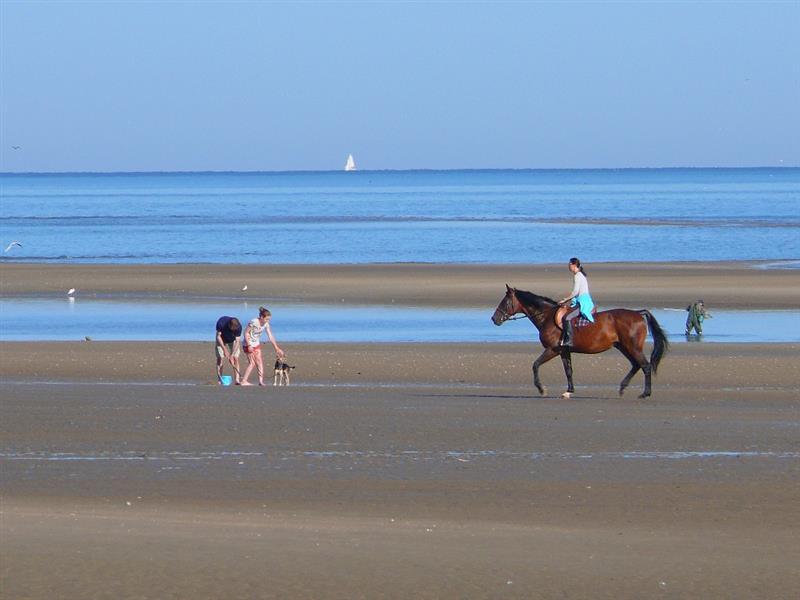 Le calvados terre de cheval camping 2 toiles port en - Camping la prairie port en bessin huppain ...